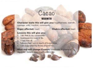 063-cacao